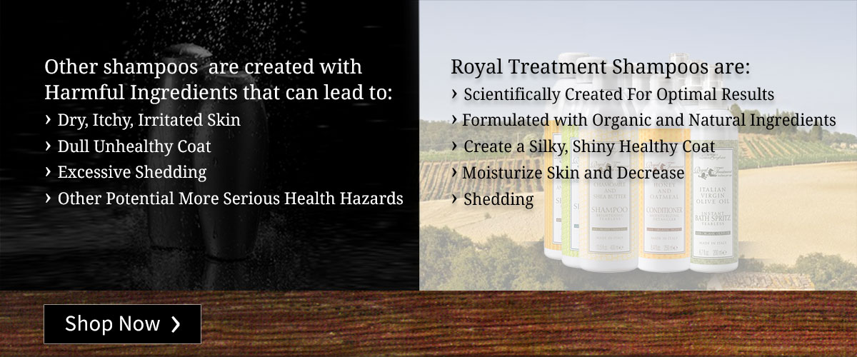Our shampoos are formulated with organic and natural ingredients