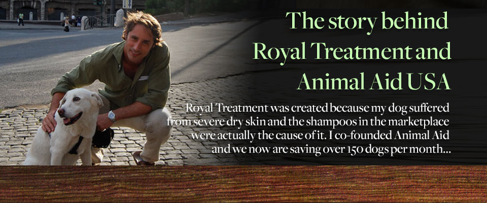 The story behind Royal Treatment and Animal Aid USA